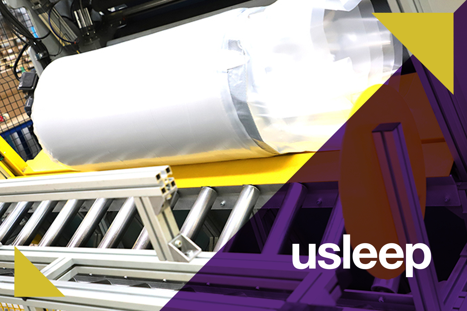 NorthEdge completes sale of The Belfield Group's Usleep subsidiary to Vita
